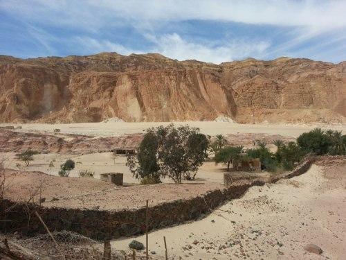 Dahab oasis